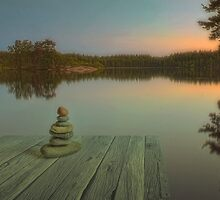 Silence of the wilderness by Veikko  Suikkanen