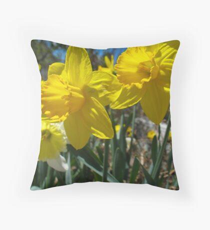Golden Daffodils Throw Pillow