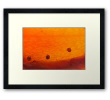 life taking off Framed Print