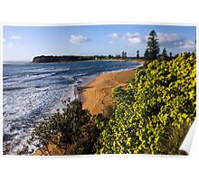 Long reef headland from above Collaroy pool Poster
