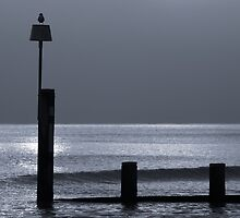 Groyne on Bournemouth beach at dusk by James1980