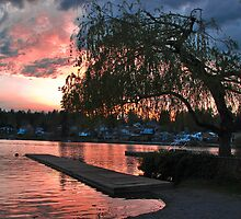 Lake Sunset - Lake Stevens Wa by Robert  Miner