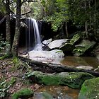 Oaklands falls panorama by donnnnnny