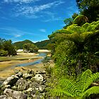 Bark Bay - Abel Tasman National Park by Phil McComiskey