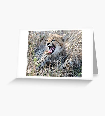 Yawn ! Greeting Card