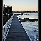 Shaving Point Boardwalk by Bevlea Ross