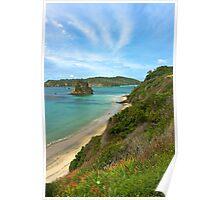 Ringaringa Beach - Stewart Island, New Zealand Poster