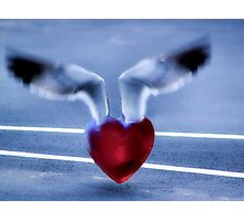 Fly Away Heart Photographic Print