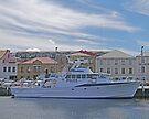"""""""Van Diemen"""", Police Boat, Hobart, Tasmania, Australia by Margaret  Hyde"""