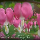 """Bleeding Hearts"" by Gail Jones"