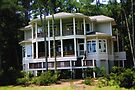 "Daufuskie Island Beach House by Christine ""Xine"" Segalas"