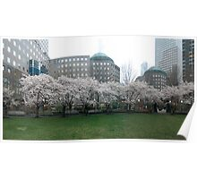 New York Park in Bloom Poster