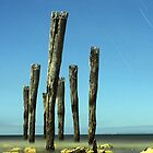 Kingcote's Ye Olde Jetty Posts @ Midnight (reduction in portrait minor) by Photography1804