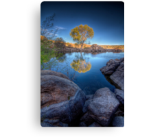 Photo Synthesis Canvas Print