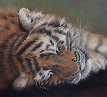 Ai Sleepy by Karen Neal