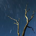 The Southern Cross vs The Earth's Rotational Axis I by Photography1804
