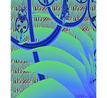 """Jungle Gym"" Photographic Print"