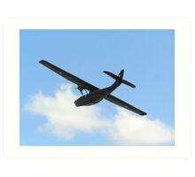 Consolidated PBY Catalina Art Print