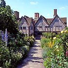Cottage garden, Stratford-upon-Avon. UK. by johnrf