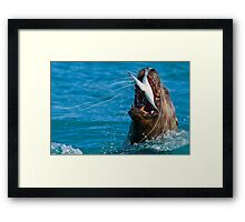 Swallow it Whole..Just for the Halibut! Framed Print
