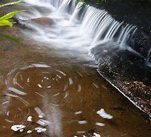 McGowans Falls Tasmania by michellerena