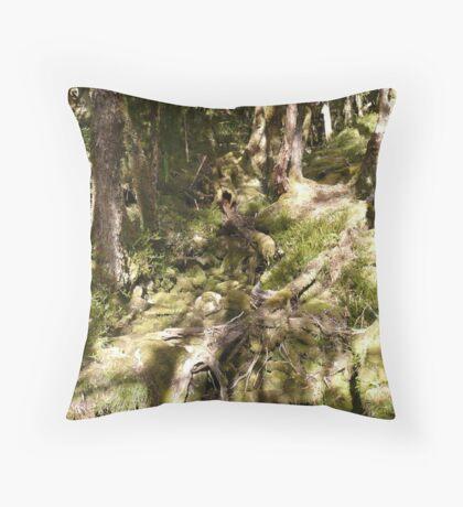 Tasmania, Overland Track 2010 Throw Pillow