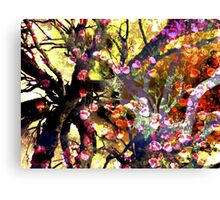 Spring has come to bring colour to the land Canvas Print