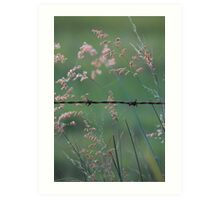 Weeds and Wire. Art Print