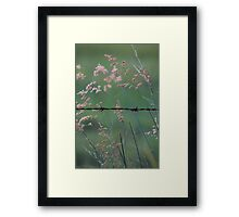 Weeds and Wire. Framed Print