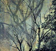 Trees 2 by AlyZen