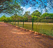Lalbagh by Jagadeesh Sampath
