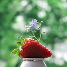 Strawberry Has Company by vichy
