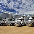 Grain Haulage Truck Fleet by LIFEPhotography