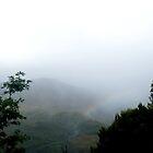 rainbow by Danaeee