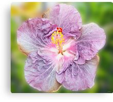 Mauve Hibiscus Canvas Print