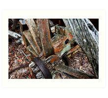 Decaying Wagon Wheel -  Hill End NSW Art Print