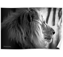 Simba the Lion King (B&W) Version Poster