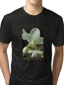 Creamy White and Lemon Daffodils Tri-blend T-Shirt