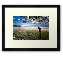 """Early Morning"" Shelly Beach, Caloundra Framed Print"