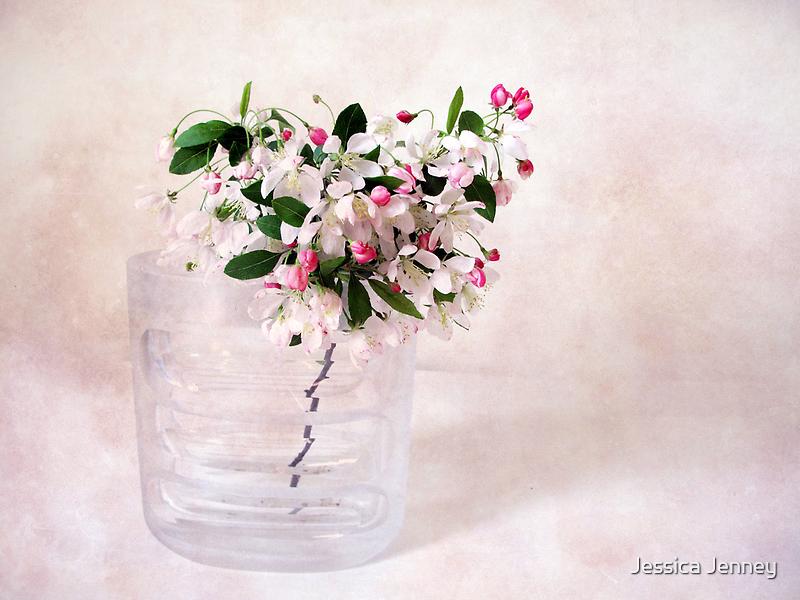 Apple Blossom by Jessica Jenney
