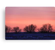 Pink Palette Canvas Print