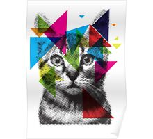 Translucent Furry Friend Poster