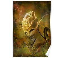 Rose ........ Poster