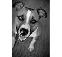 Smiles! Photographic Print