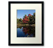 Red and Green - the Arrival of Autumn Framed Print
