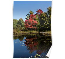 Red and Green - the Arrival of Autumn Poster