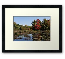 Red Maple - Still Forest Lake in the Fall Framed Print