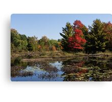 Red Maple - Still Forest Lake in the Fall Canvas Print