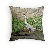 A Grey Heron Throw Pillow