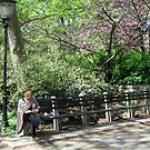 Sunday in the Park- Reading by Patricia127